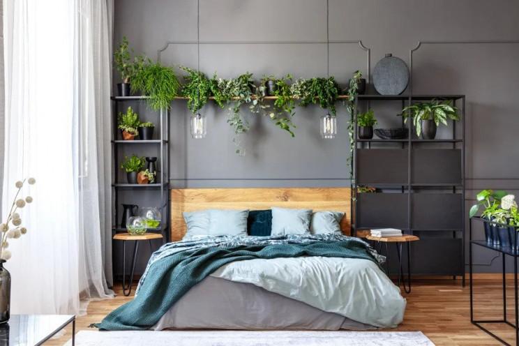 Ideias de decoração: como trazer a natureza para dentro de casa